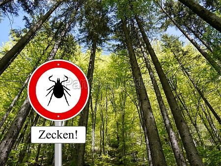 tick u200bu200bsign in the forest