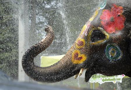 thailand songkran festival