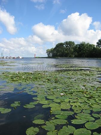 waterscape on szczecin lagoon