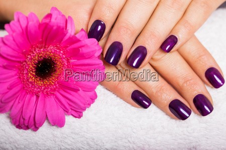 woman with manicured hands and gerbera