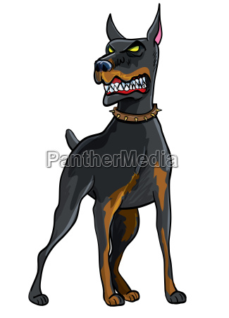 doberman pinscher illustration