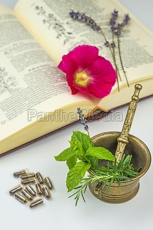 naturheilunde with medicinal plants