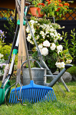 watering can and tools in the