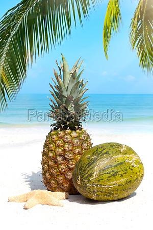 tropical fruits on the sandy beach