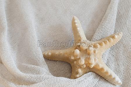 linen fabric with starfish