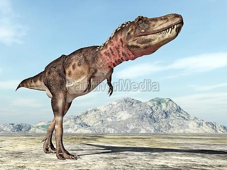 tarbosaurus dinosaur