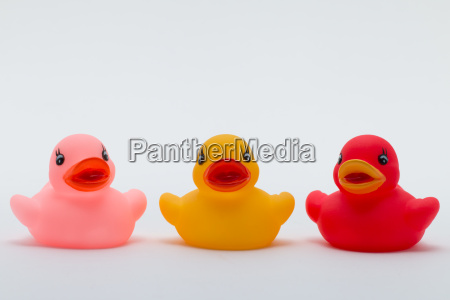 three rubber ducks in different colors