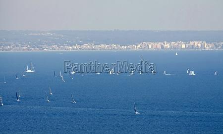 sailboat group regatta race