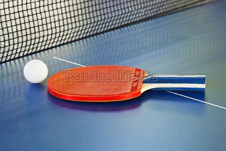 paddle tennis ball on ping pong