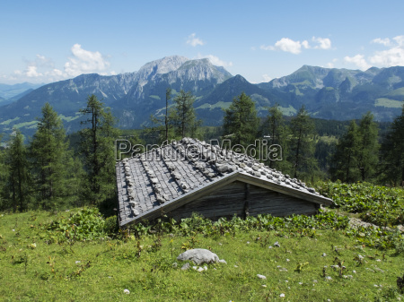 roof of a hut in the