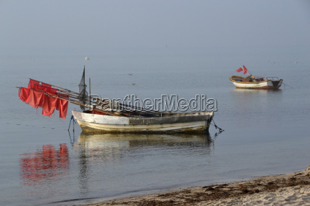 water baltic sea salt water sea