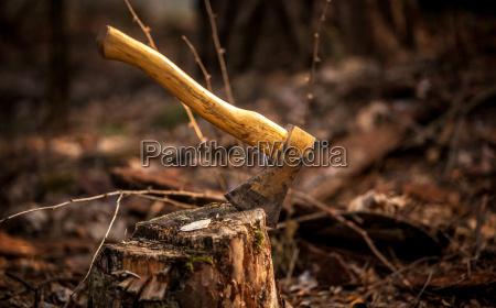 photo of axe in stump