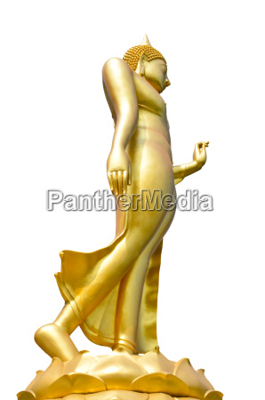 statue of buddha isolated on