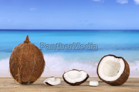 coconut fruit in the summer by