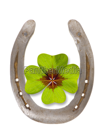 horseshoes and clover for luck