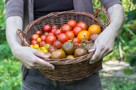 gardener hand hold woman garden gardening
