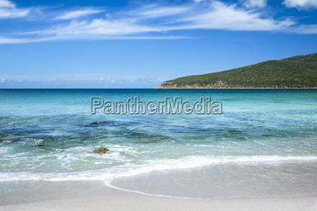 australijski plazy