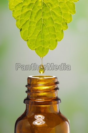 alternative medicine with extract of a