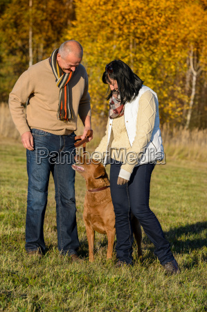couple training dog in sunny autumn