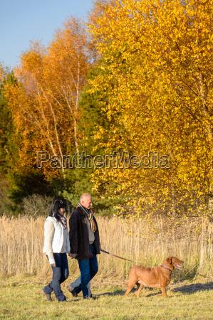couple walking dog in sunny autumn