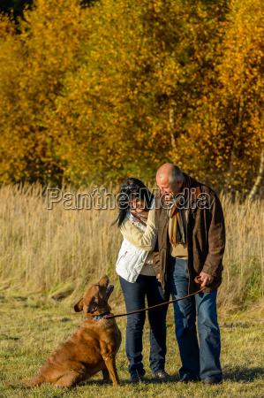 couple training dog autumn sunset park