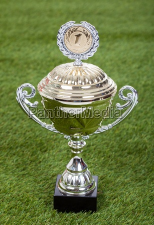shiny championship trophy on pitch
