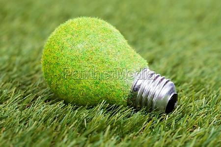 energy saving bulb on green grass