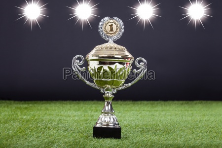 trophy cup lying on green pitch