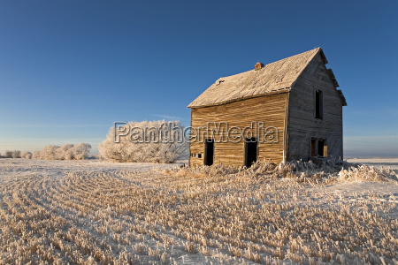 early morning on the prairie