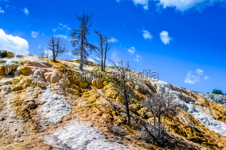 scenic view of geothermal land and