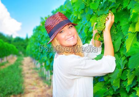 woman working on grape field