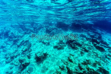 beautiful seabed background