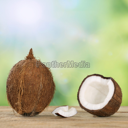 coconut fruits in summer with copy