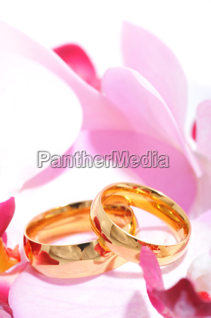 two rings with orchid