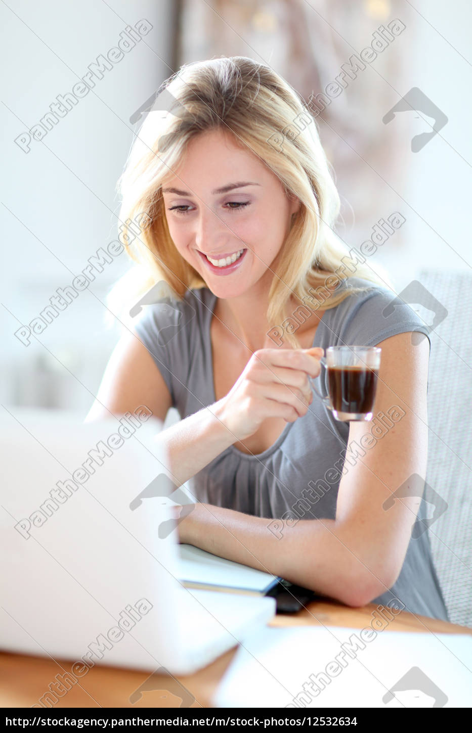 woman, working, at, home, on, laptop - 12532634