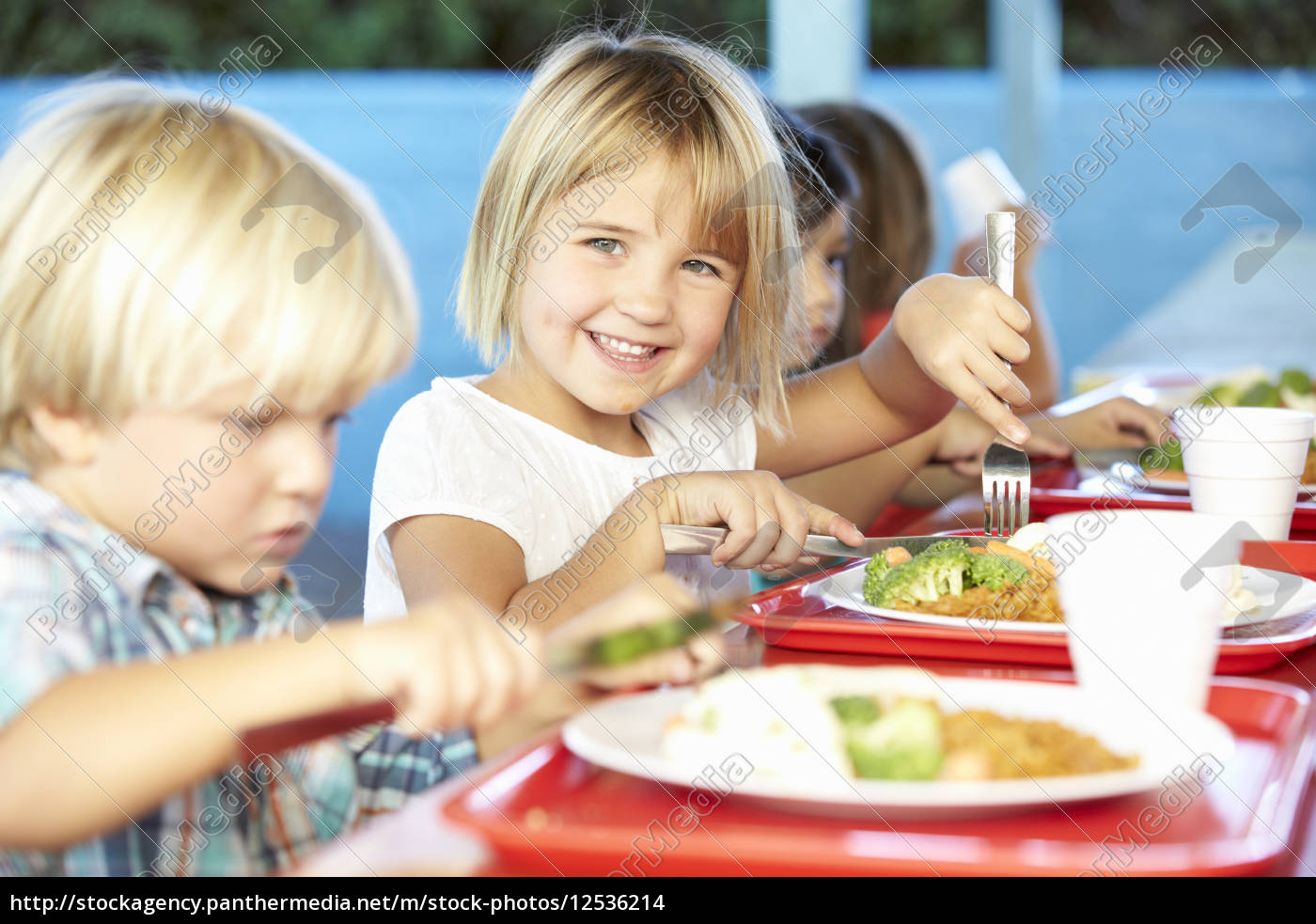 elementary, pupils, enjoying, healthy, lunch, in - 12536214