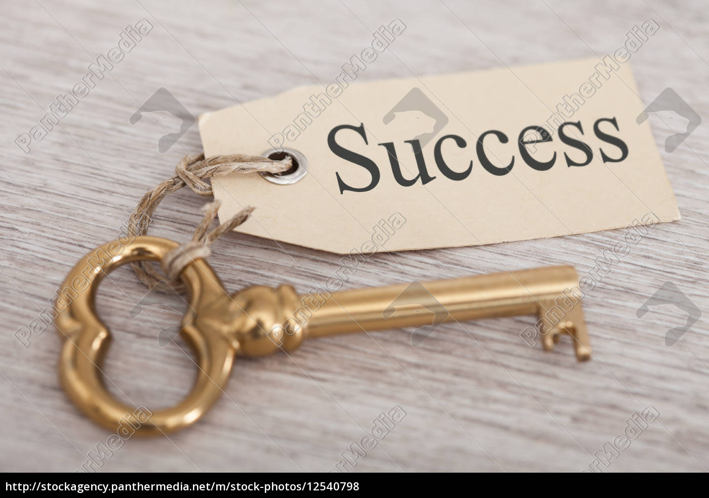 key, with, success, tag, on, table - 12540798