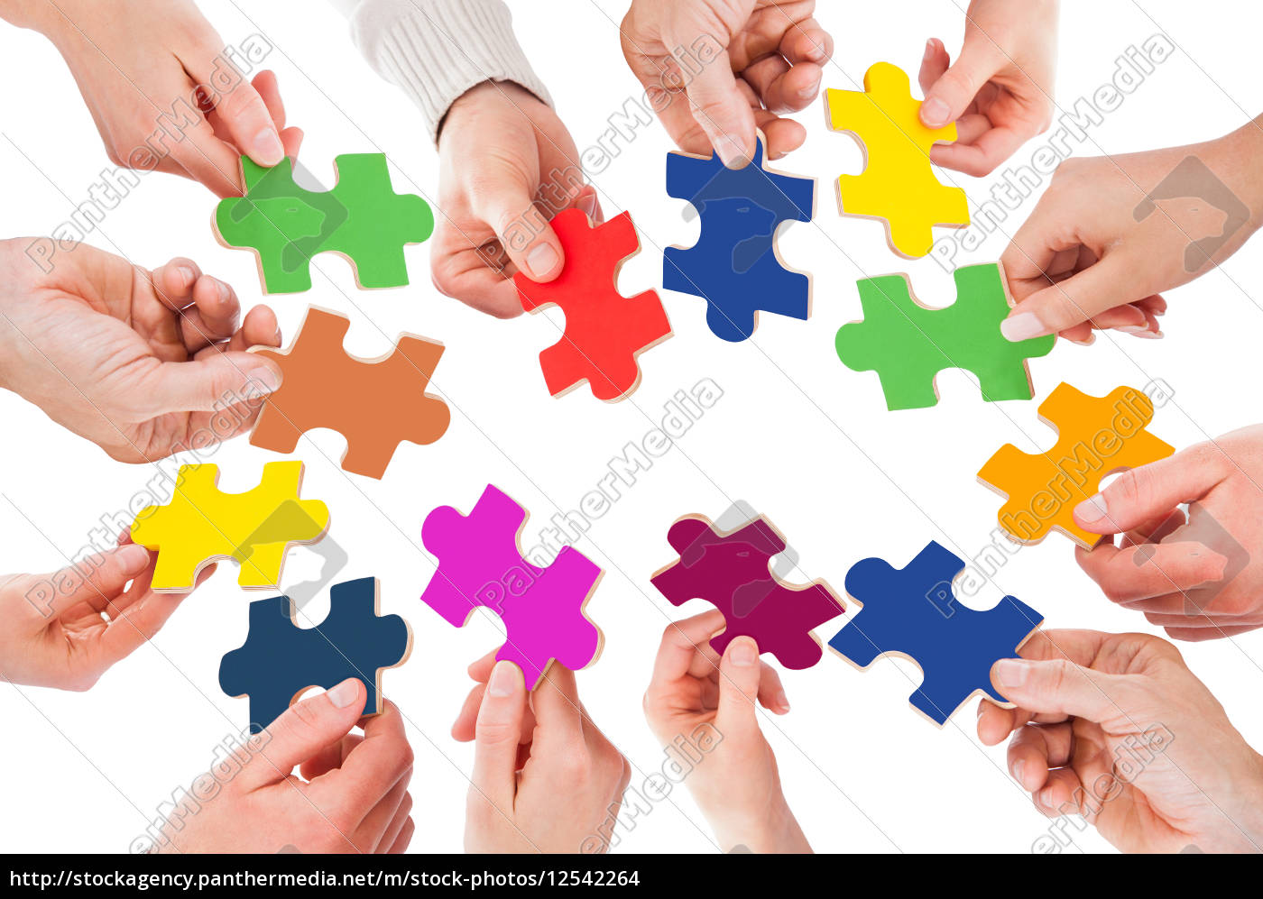 five, people, hand, with, puzzle - 12542264