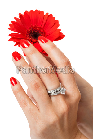 female hands isolated with beautiful manicured