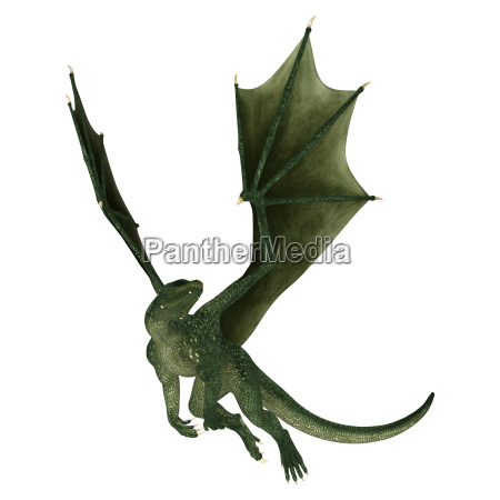 fantasy dragon on white
