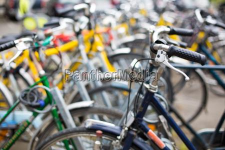 bike rental servicemany bikes in a