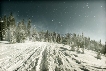 christmas background with snowy path in