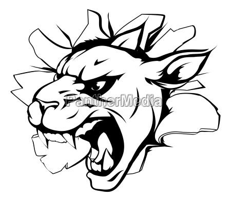 panther mascot breaking through wall
