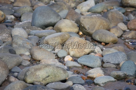 stones and rocks on a sandy