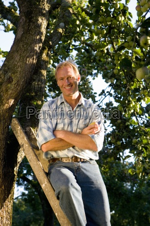 man on ladder in orchard arms