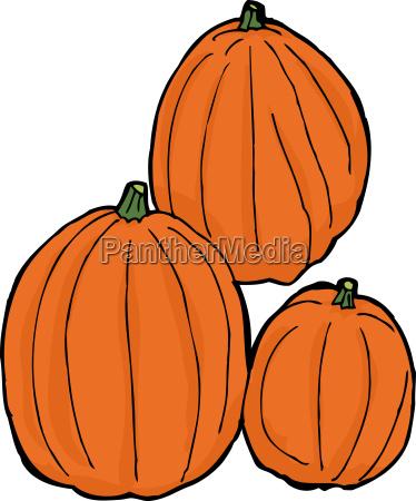 three isolated pumpkins