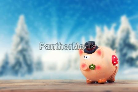 gluecksschwein in winter