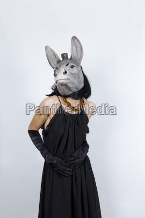 donkey in evening dress