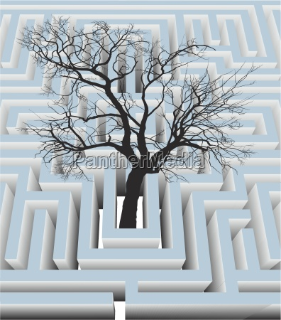 tree in the labyrinth