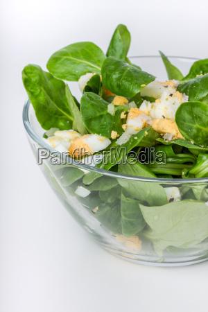 lambs lettuce lettuce corn salad salad